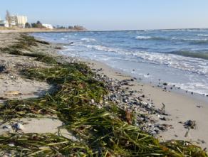 Urlaub an der Ostsee: Unsere Mutter-Kind-Kur in Großenbrode